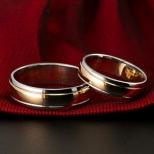 Vestuviniai žiedai Nr. R-30